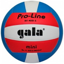 Волейбольный мяч Gala Pro-Line BV4051S