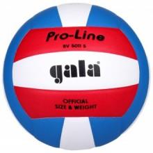 Волейбольный мяч Gala Pro-Line BV5011S