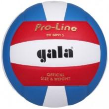 Волейбольный мяч Gala Pro-Line BV5091S