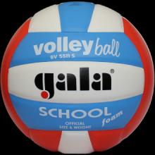Волейбольный мяч Gala School Foam BV5511S
