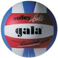 Волейбольный мяч Gala Training BV5531S