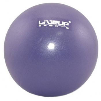 Мяч гимнастический 20 см. LiveUp Mini Ball (фиолетовый)