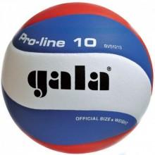Волейбольный мяч Gala Pro-Line BV5121S