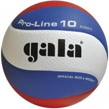 Волейбольный мяч Gala Pro-Line BV5581S