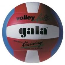 Волейбольный мяч Gala Training BV5061S