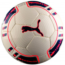 Мяч для футзала Puma evoPower 5 Futsal