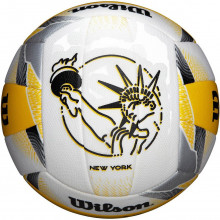 Волейбольный мяч Wilson AVP II Replica Beach (арт. WTH6102XB)